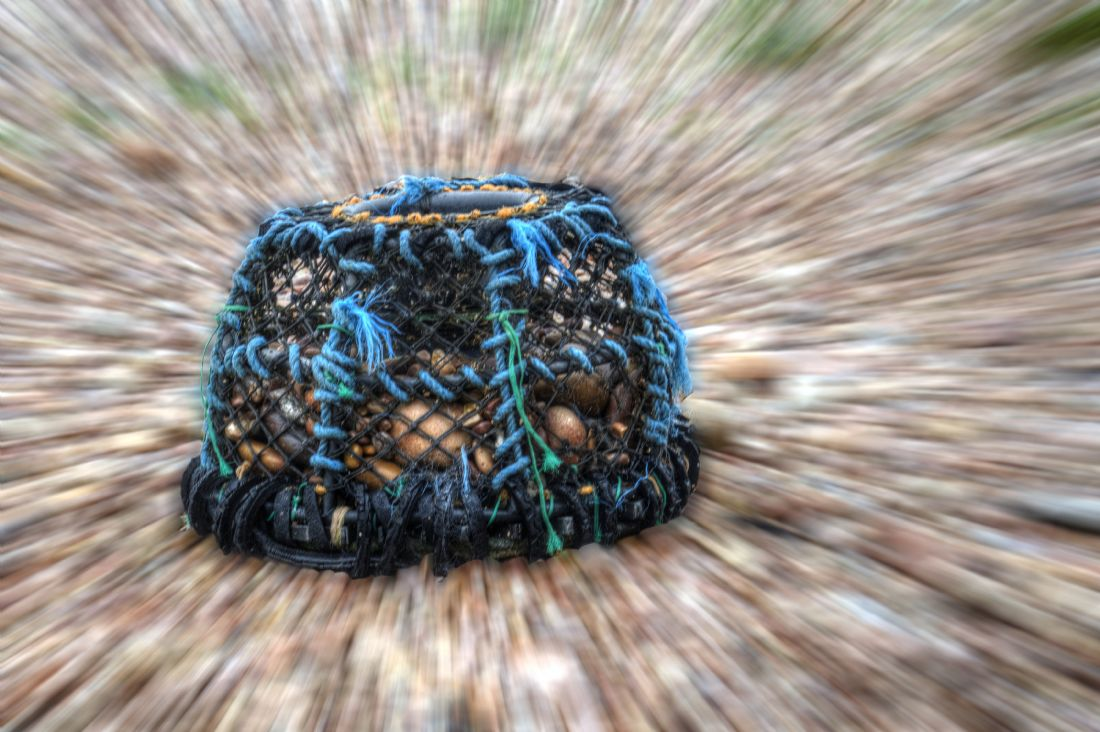 Chris Day | Lobster Pot on Sidmouth Beach