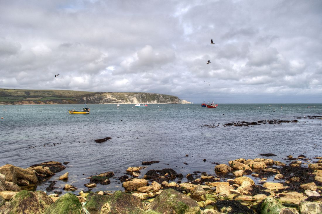 Chris Day | Swanage Bay