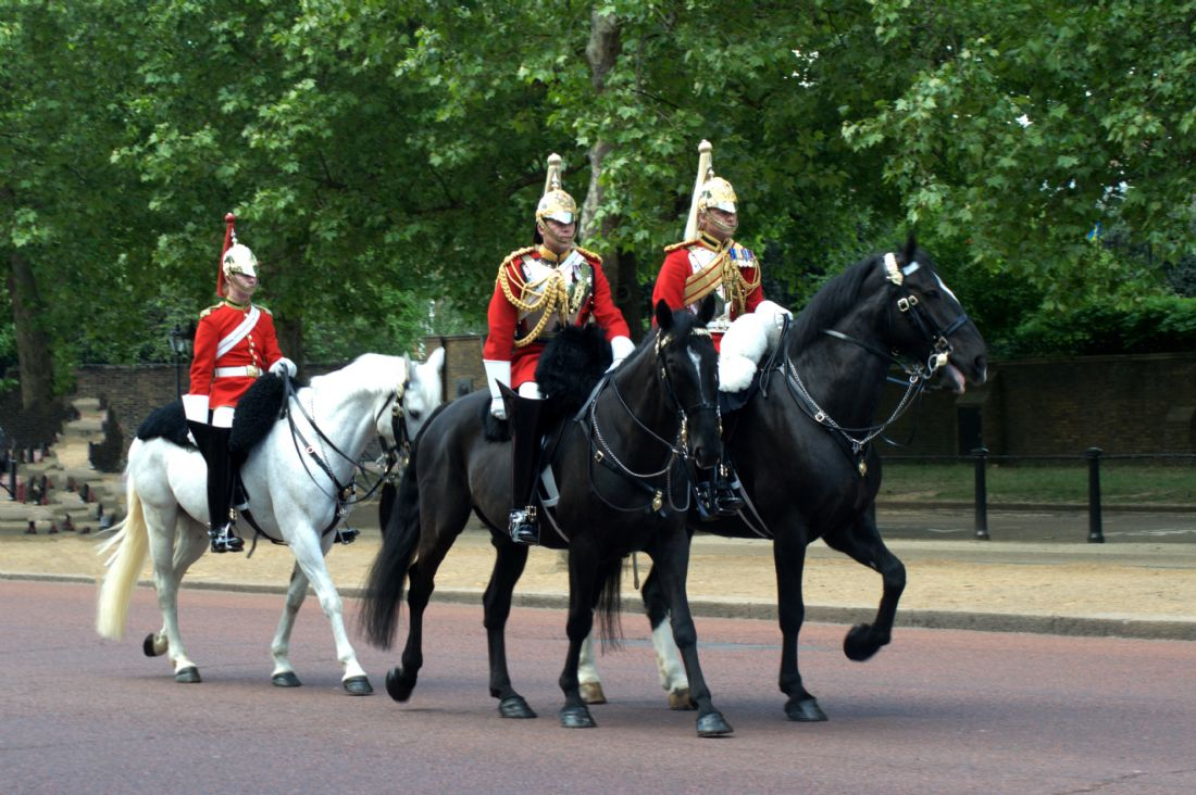 Chris Day | Household Cavalry
