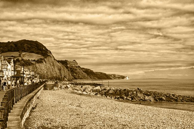 Chris Day | Sidmouth Beach