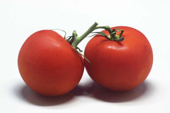 Chris Day | Tomatoes