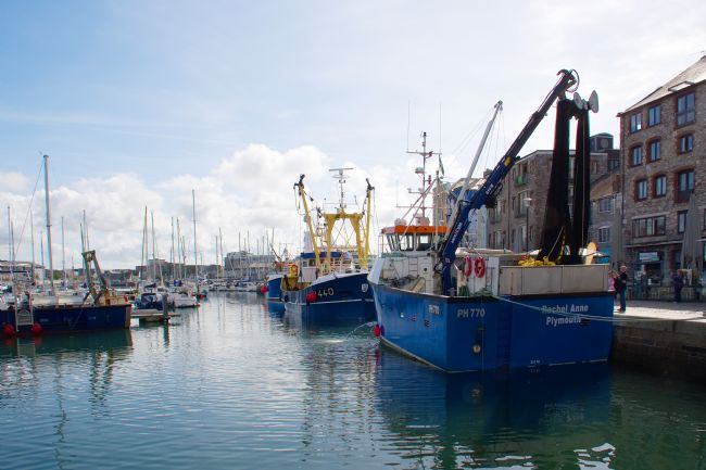 Chris Day | Fishing boats in Sutton Harbour