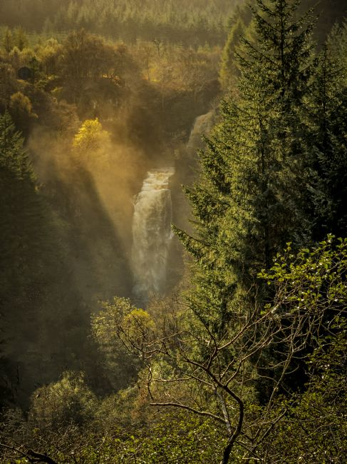 David Brookens | Autumn Sun on Glenashdale Falls