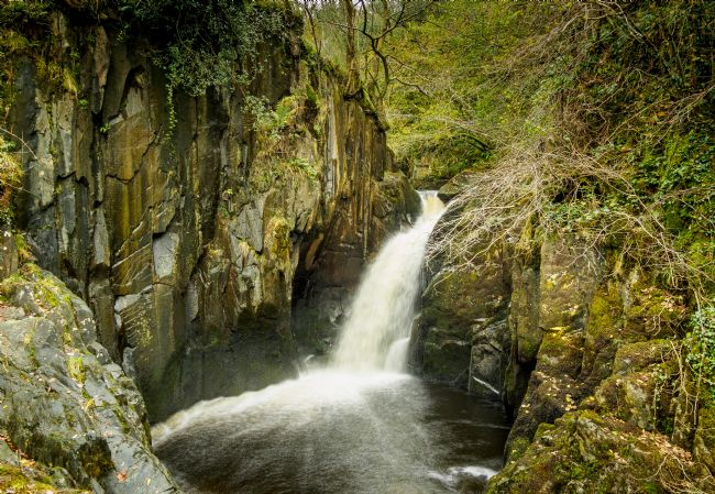 David Brookens | Hollybush Spout