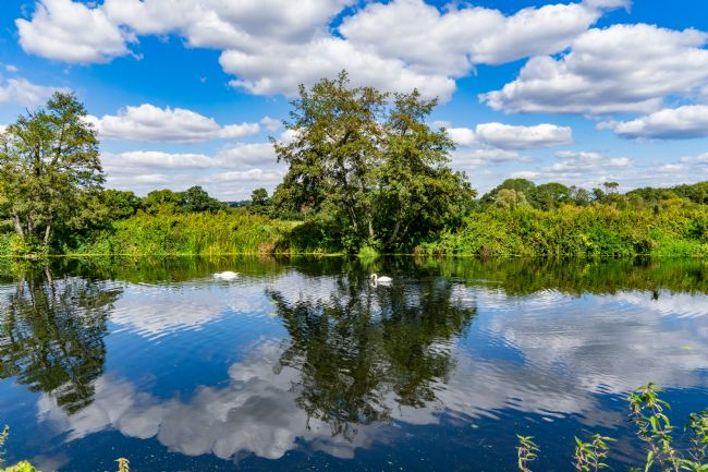 Phil Wareham | Stour Reflections