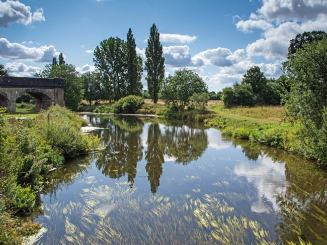 Phil Wareham | The Blandford Stour