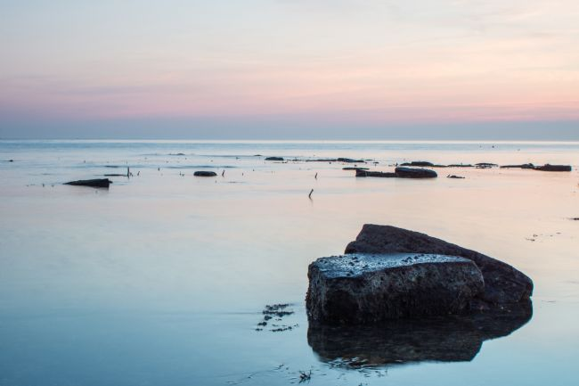 Phil Wareham | Kimmeridge Colours