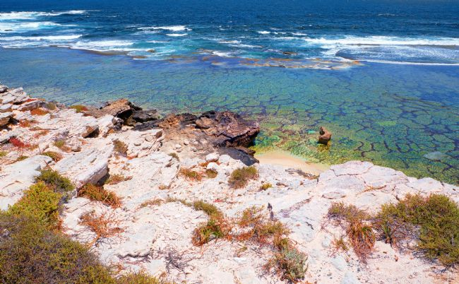 Pauline  Tims | The Colours of Rottnest Island