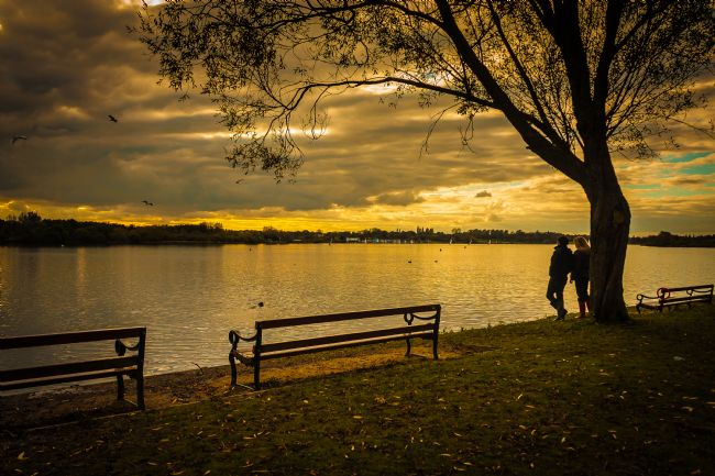 Mal Delamare | Just stand and look! Evening at Pennington Flash