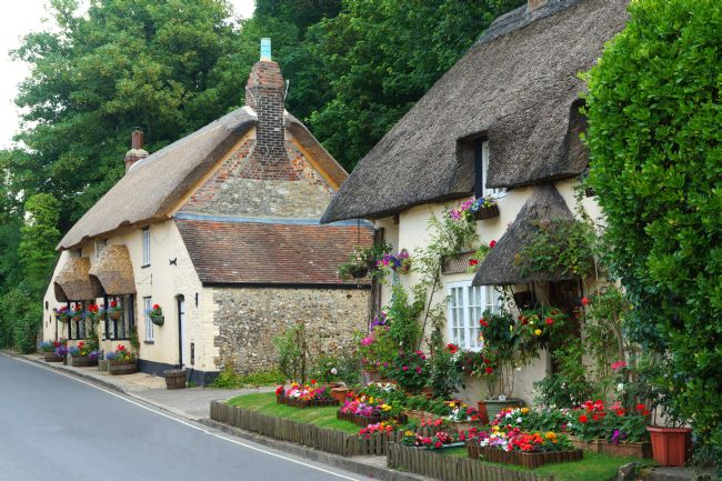 David Birchall | Dorset thatched cottages.