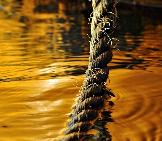 Kaye Menner | Rope on Liquid Gold