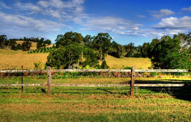 Kaye Menner | Golden Countryside Australia