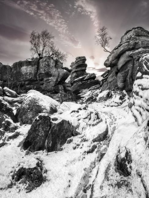 Tom Bell | Brimham Rocks