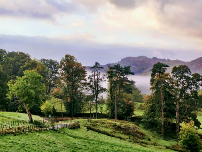 Susan Tinsley | Mist at Loughrigg