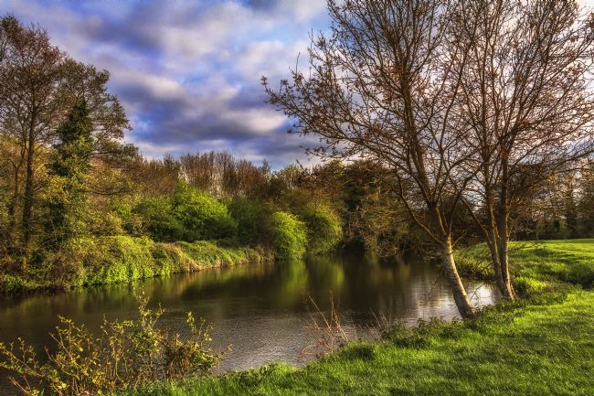 Ian Lewis | The River Kennet At Burghfield