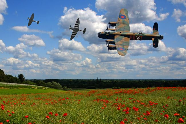 Ken Brannen | Lancaster Spitfire and poppy Field