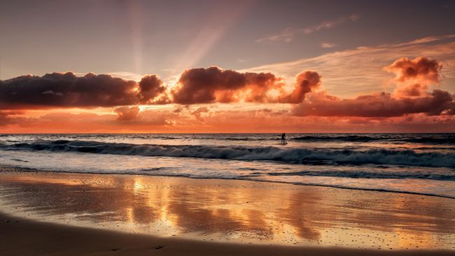 Jennifer Franklin | Paddle boarder at sunrise on golden beach