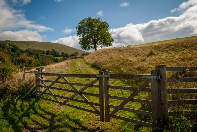 Iain McGregor | A Gate over to Wolfscote Dale