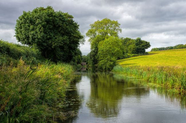 Pete Hemington | Grand Western canal near Halberton in Devon