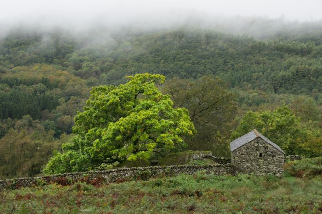 Peter Hemington | Misty Duddon Valley
