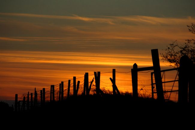 Pete Hemington | Sunset through the fence