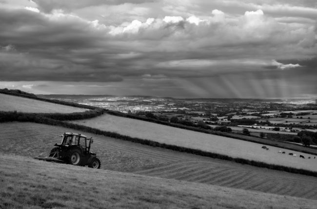 Pete Hemington | Hay making in Mid Devon