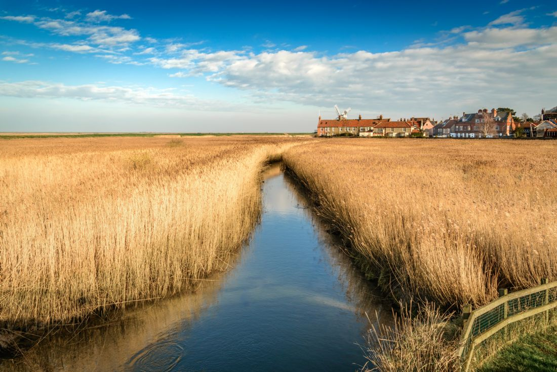 Stephen Mole | Stream at Cley Mill