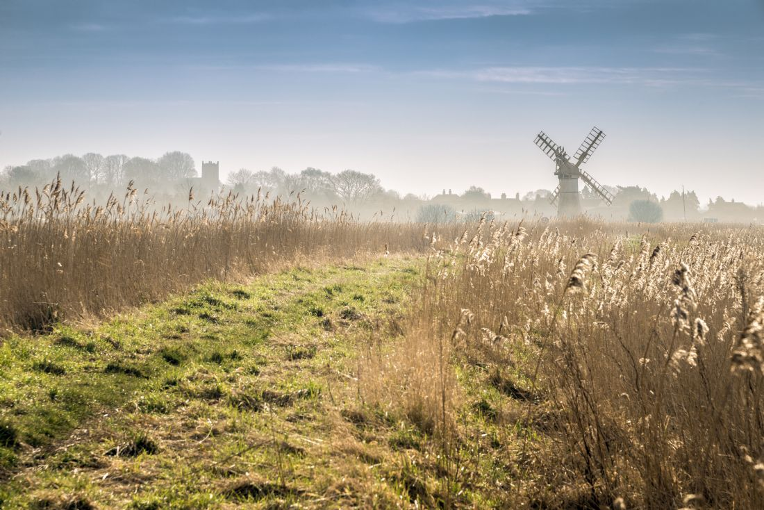 Stephen Mole | Footpath to Thurne Mill