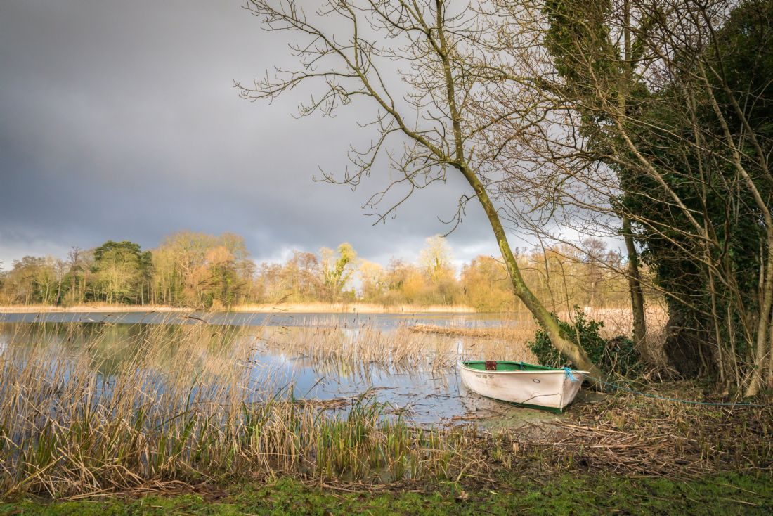 Stephen Mole | Boat at South Walsham
