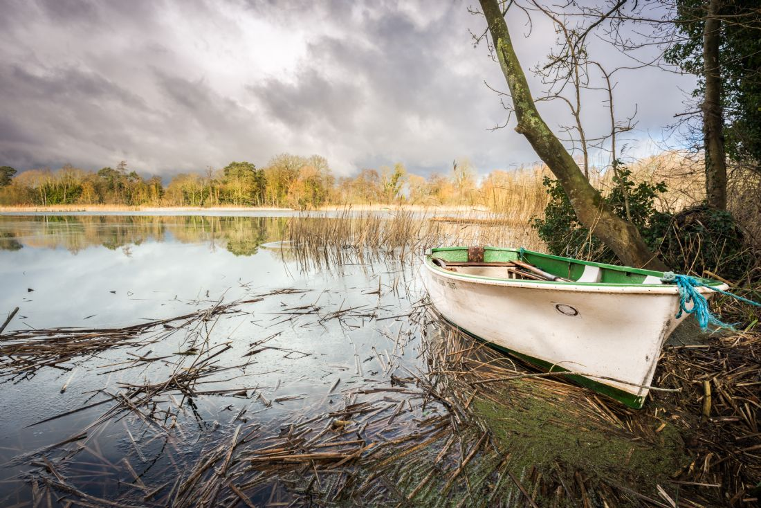 Stephen Mole | Dinghy at South Walsham Broad