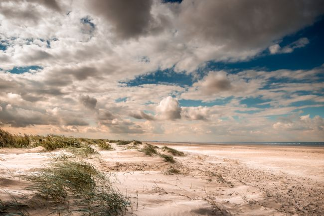 Stephen Mole | Windy Brancaster Beach