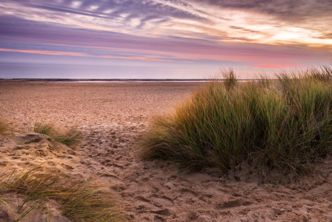 Stephen Mole | Sunrise through the dunes at Winterton