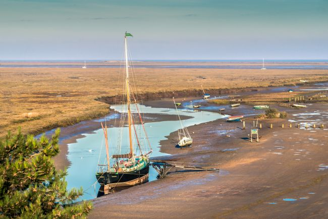 Stephen Mole | Juno at Blakeney