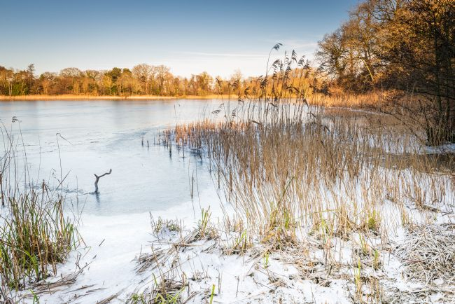 Stephen Mole | Winter on South Walsham Broad