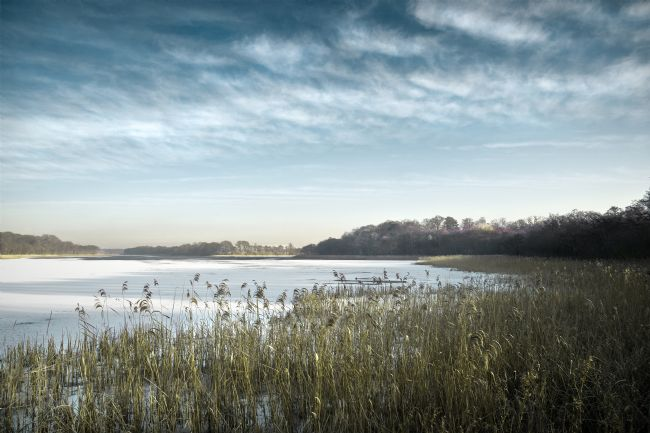 Stephen Mole | Ice on Ormesby Broad