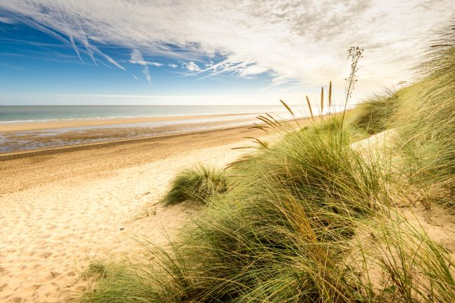 Stephen Mole | Through the dunes at Winterton