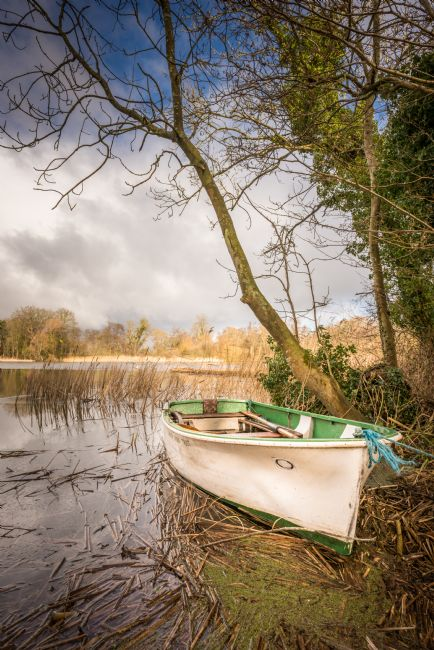 Stephen Mole | Moored at South Walsham Broad