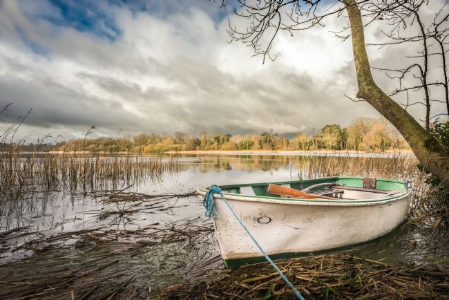 Stephen Mole | Dinghy on South Walsham Broad
