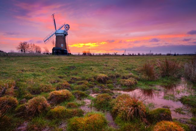 Stephen Mole | Horsey Mill Sunrise