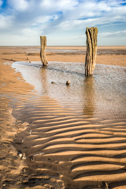 Stephen Mole | Two stumps at  Titchwell beach