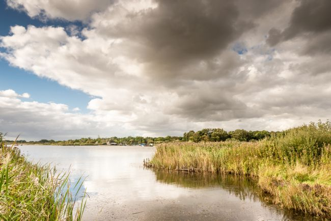 Stephen Mole | Hickling Broad