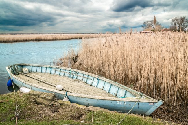 Stephen Mole | Dinghy at Stokesby Ferry