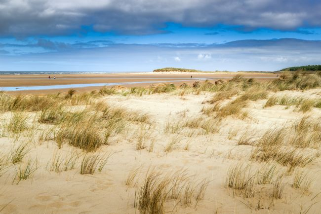 Stephen Mole | Dunes at Holkham Beach