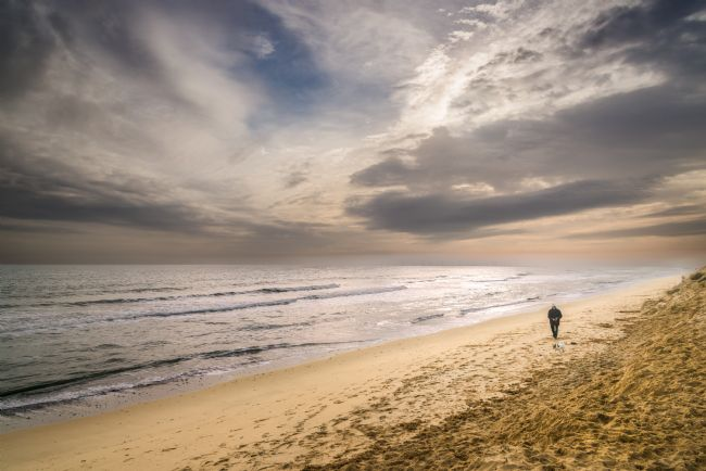 Stephen Mole | Dog walker on Hemsby Beach