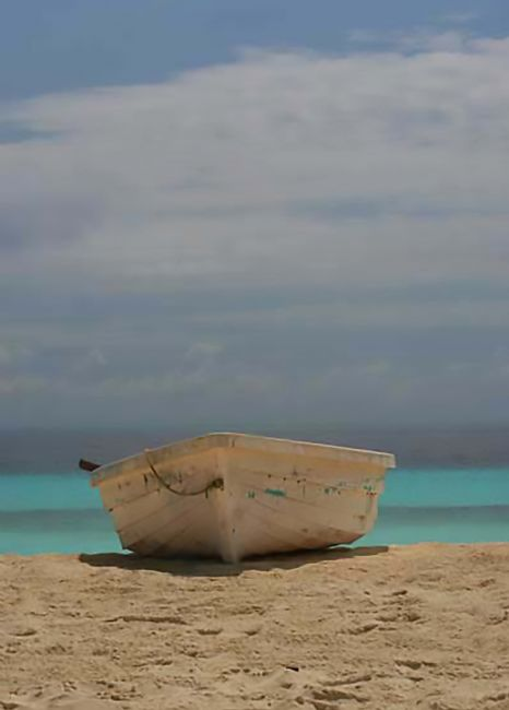 Roz Collins | Boat on a Madivian Beach