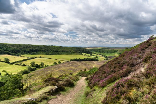 Richard Burdon | The Path to Low Horcum
