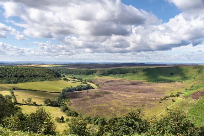 Richard Burdon | Horcum in Summer