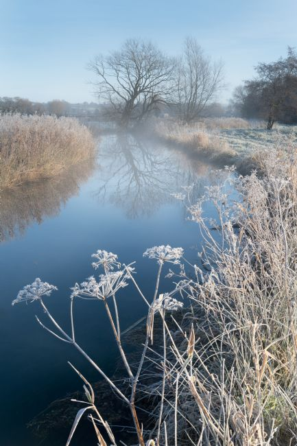 Richard Burdon | A Frosty Morning at Costa Beck