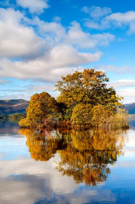 Richard Burdon | Autumn Colour at Milarrochy Bay