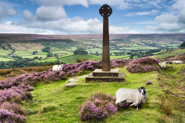 Richard Burdon | Rosedale Millennium Cross